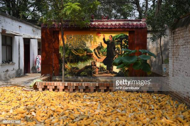 This photo taken on September 28 2017 shows a wall illustration featuring an image of late communist leader Mao Zedong in Zhangzhuang village in...