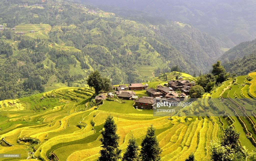 This photograph taken on August 25, 2016 shows a general view of paddy fields at Dangniu village in Congjiang county, south China's Guizhou province. / AFP / STRINGER / China OUT