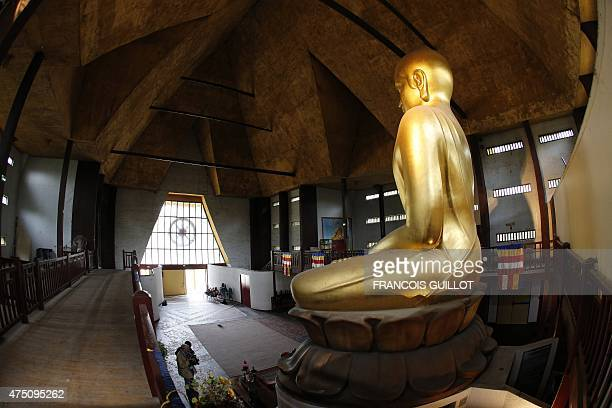 This picture shows a profile view of the golden Buddha statue inside the Great Pagoda of the Vincennes wood after major renovation work in Paris on...