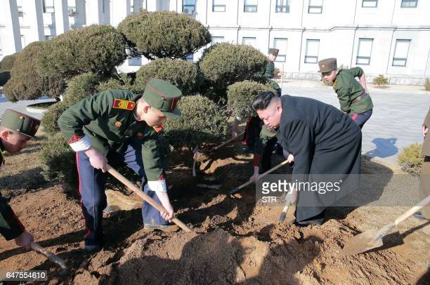 This picture taken by North Korean news agency KCNA on March 2 2017 and released on March 3 shows North Korean leader Kim JongUn planting trees with...