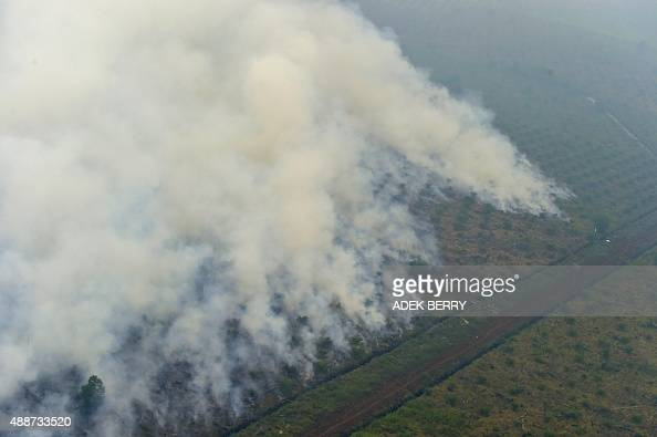 This picture taken from a Kamov helicopter operated by Indonesia's Disaster Mitigation Agency shows fires burning at a concession area in Pelalawan...