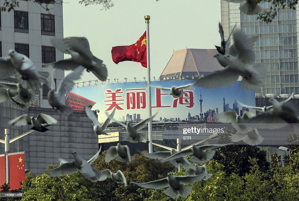 This picture taken on April 6, 2013 shows a flock of pigeons flying over a park in Shanghai. Cities in eastern China where an H7N9 bird flu outbreak has killed six people moved to prevent the virus from spreading by banning live poultry trade and culling fowl. CHINA