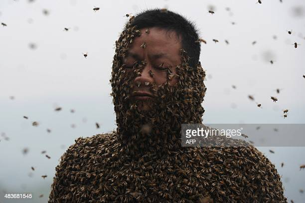 This picture taken on April 9 2014 shows She Ping a 34 yearold local beekeeper covered with a swarm of bees on a small hill in southwest China's...