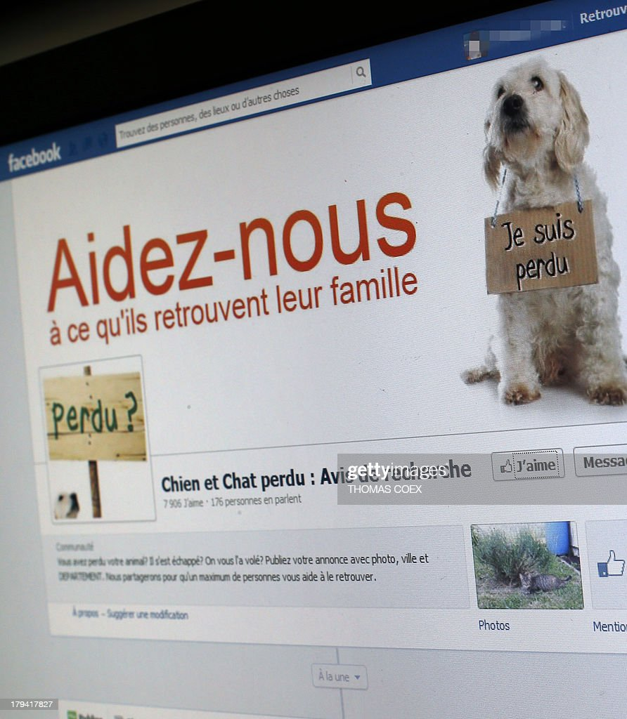 This picture taken on August 29, 2013 in Paris, shows the front page of a Facebook website. In the recent years, people have used Facebook to find back their lost dogs and cats through social networks such as Facebook and Twitter.