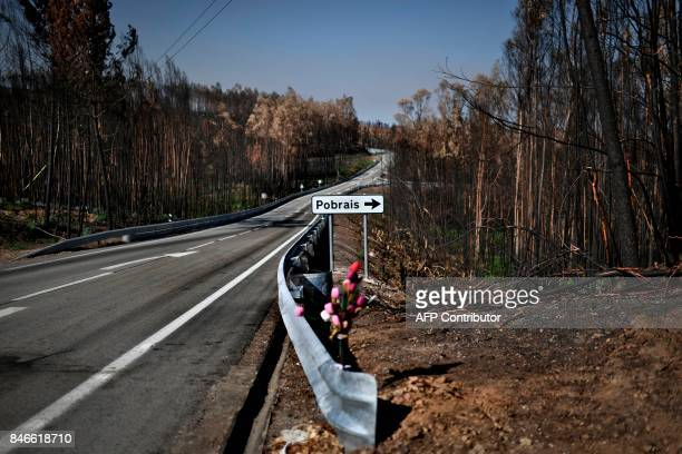 This picture taken on August 9 shows a bouquet of plastic flowers on the side of N236 road near the village of Pobrais in Pedrogao Grande to pay...