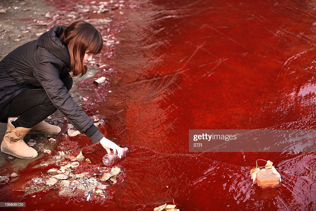 This picture taken on December 13 2011 shows a woman collecting a sample of the red polluted water flowing from a sewer into the Jian River in...