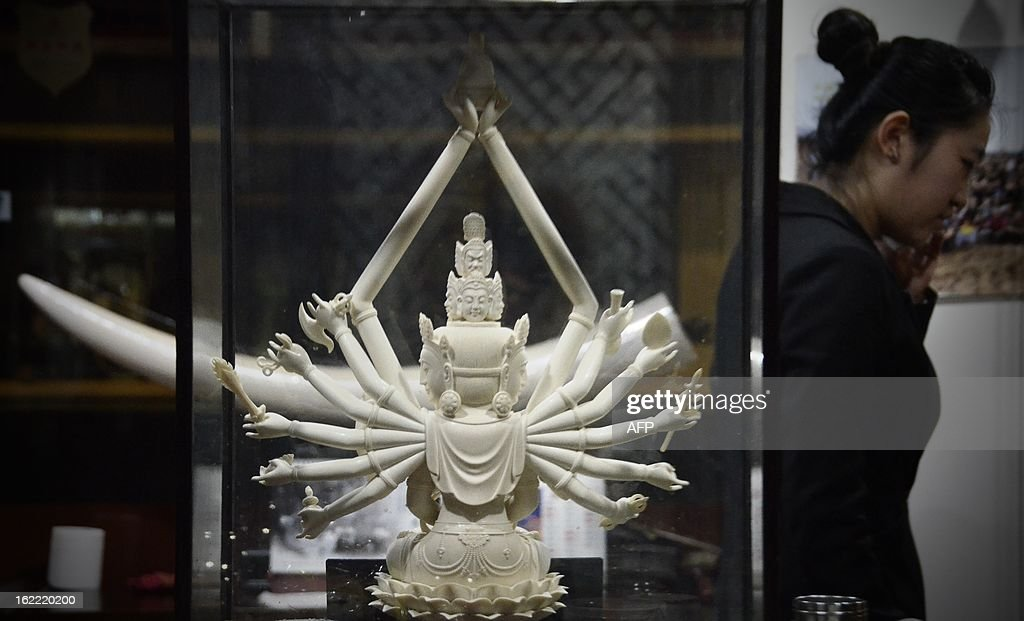 This picture taken on February 20, 2013 shows an ivory Buddha carving on display at an ivory shop in Beijing. The number of African elephants killed by poachers in 2012 will most likely be higher than the 25,000 illegally killed the previous year, the head of UN wildlife trade regulator CITES said on Februay 19. One kilogramme (about two pounds) of ivory is currently estimated to be worth around 2,000 USD on the Asian black market. AFP PHOTO / WANG ZHAO