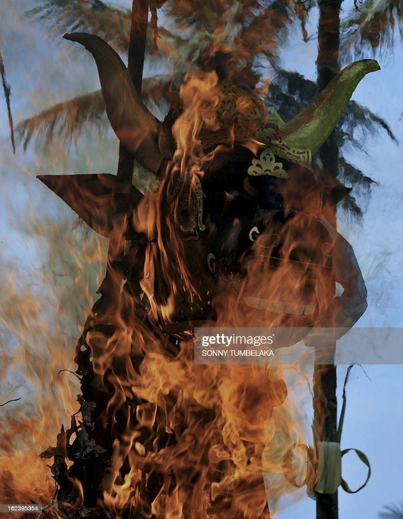 This picture taken on February 22, 2013, shows a sarcophagus resembling a buffalo and containing human remains burning during a cremation ceremony, known locally as 'ngaben', at Buruan Kelod village in Tabanan on Bali island. The cremation is intended to return the dead to the fundamental elements of fire, air, water, earth and void.