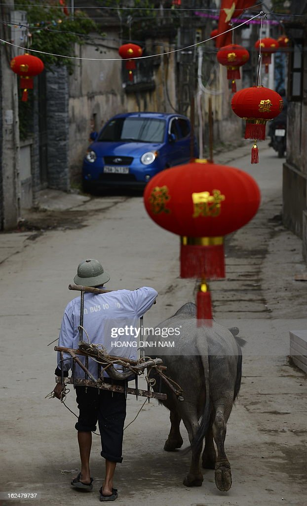 This picture taken on February 23, 2013 shows a farmer walking home under Chinese-made red lanterns hanging in the village of Uoc Le on the outskirts of Hanoi for the Lunar New Year or, known as the Tet celebration in Vietnam. Many northern Vietnamese Red River delta localities, especially in rural areas, have been decorated with imported Chinese-made red lanterns for the celebrations. Earlier this month the local daily Tuoi Tre (Youth) reported some Chinese-made lanterns bearing the Chinese characters 'Nansha', the Chinese name of the disputed Spratley islands chain in the South China Sea in which Vietnam also stakes claims, had been seized by local Vietnamese authorities in northern Vietnam. AFP PHOTO / HOANG DINH Nam