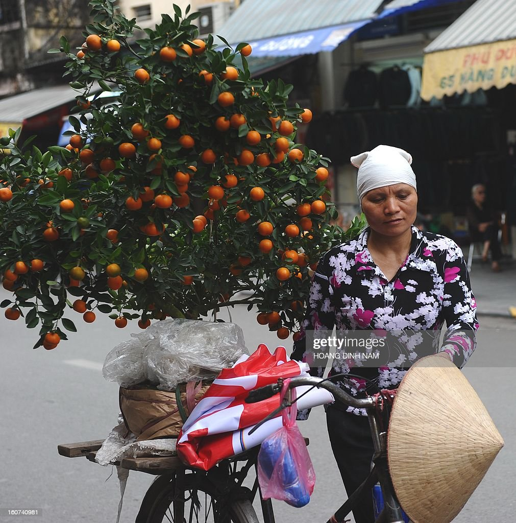 This picture taken on February 4, 2013 shows a street vendors selling a tabgerine tree, a traditonal good omen for Chinese new year, in downtown Hanoi. With the upcoming lunar new year celebrations, vendors and sales staff are attempting to make the last transactions before the holidays begin. AFP PHOTO/HOANG DINH Nam