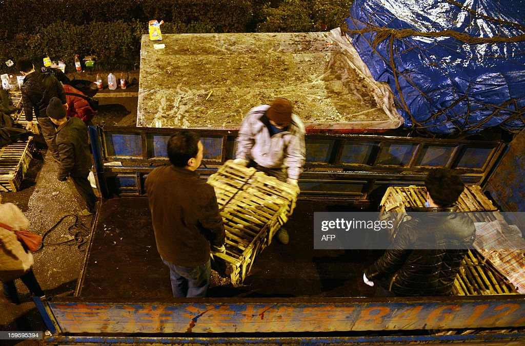 This picture taken on January 15, 2013 shows volunteers moving a cage of cats into a vehicle after the truck that was transporting more than 1000 cats was involved in an accident in Changsha, central China's Hunan province. The cats, dehydrated, hungry and destined to be eaten, were left stranded in more than 40 cramped cages in the abandoned truck They were finally rescued by animal loving local volunteers, state media reports. CHINA