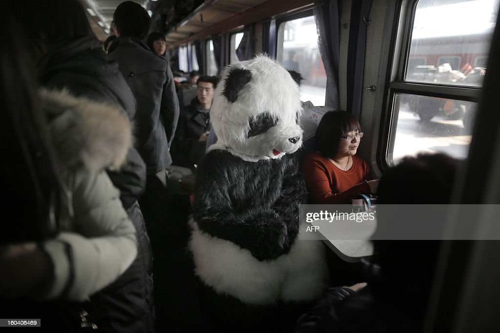 This picture taken on January 26, 2013, the first day of Spring Festival travel season, shows a lady wearing a panda constume (C) sits in her train back to Cangzhou in Hefei from Beijing. The lady, together with other three female friends, said she would like to feel the special atmosphere of the Spring Festival travelling in this way. CHINA OUT AFP PHOTO