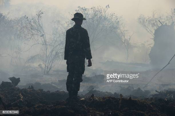 This picture taken on July 26 2017 shows an Indonesian ranger inspecting the peat forest fire at Meulaboh Aceh province In the past week about 35...