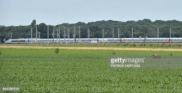 This picture taken on July 3 2016 shows a French TGV highspeed train passing in Eckwersheim eastern France on the first day of the new EastEuropean...