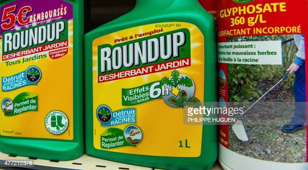 This picture taken on June 15 2015 shows a bottle of Monsanto's 'Roundup' pesticide in a gardening store in Lille French Ecology Minister Segolene...