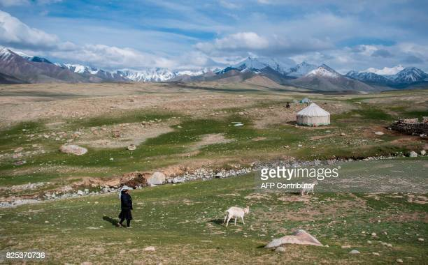 TOPSHOT This picture taken on June 27 2017 shows a woman herding her two goats before the Karakorum mountain range near the ChinaPakistan Friendship...