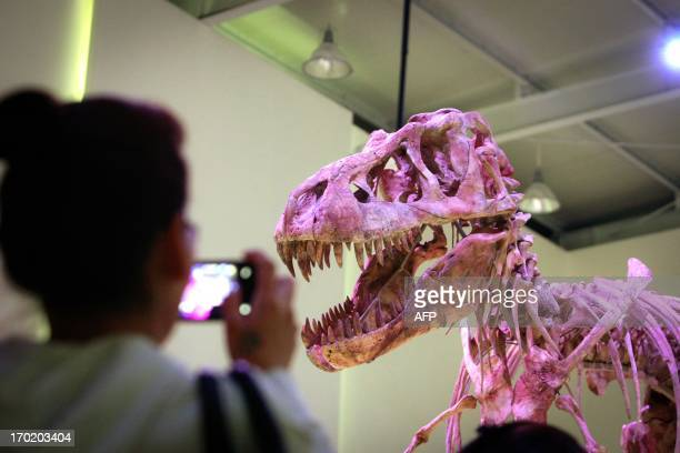 This picture taken on June 8 2013 shows the 70millionyearold Tyrannosaurus bataar which was recently returned by the United States goes on display in...