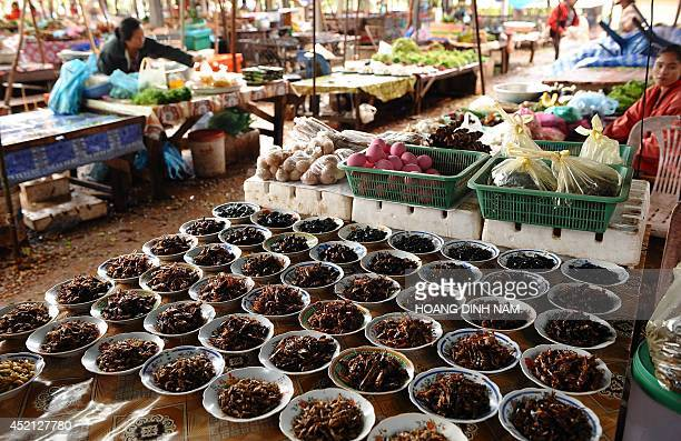 This picture taken on March 15 2011 shows plates of fried insects including crickets and grasshoppers for sale at a local market in Vientiane AFP...