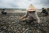This picture taken on May 31 2016 shows workers gathering pebbles at a sand excavation site along the Mekong River in Vientiane Grain by grain...