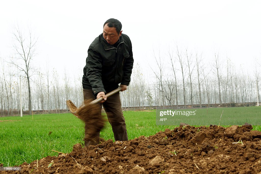This picture taken on November 25, 2012 shows a man filling a grave that was flattened during the 'flatten graves to return farmland' campaign in Zhoukou, central China's Henan province. Zhoukou has halted a campaign to clear graves for farmland after the demolition of more than two million tombs sparked outrage in a country where ancestors are traditionally held in deep respect. CHINA OUT AFP PHOTO