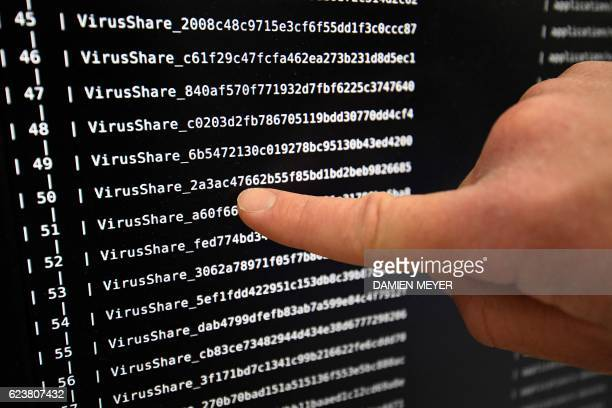 This picture taken on November 3 2016 shows on a screen viruses list at the LHS of the INRIA in Rennes Paradise where computer viruses blossom under...