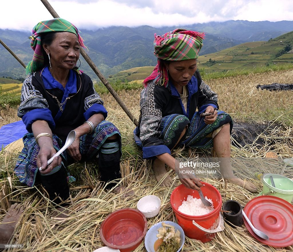 This picture taken on October 1 2013 shows Hmong hilltribe women having lunch as they harvest rice on terrace rice fields in Mu Cang Chai district in...