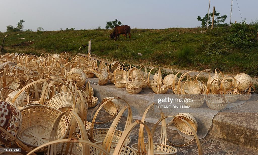 This picture taken on October 15 2014 shows bamboo flower baskets destined for export drying under sunshine outside a family workshop at Hong Van...