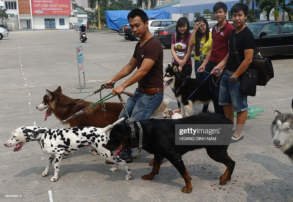 This picture taken on October 6, 2013 shows people with their pet dogs after attending a dog show in Hanoi. Pet ownership in Vietnam has soared over the last 20 years as the middle class swelled since the Southeast Asian communist nation switched to a market economy in the early 1990s. AFP PHOTO/HOANG DINH NAM