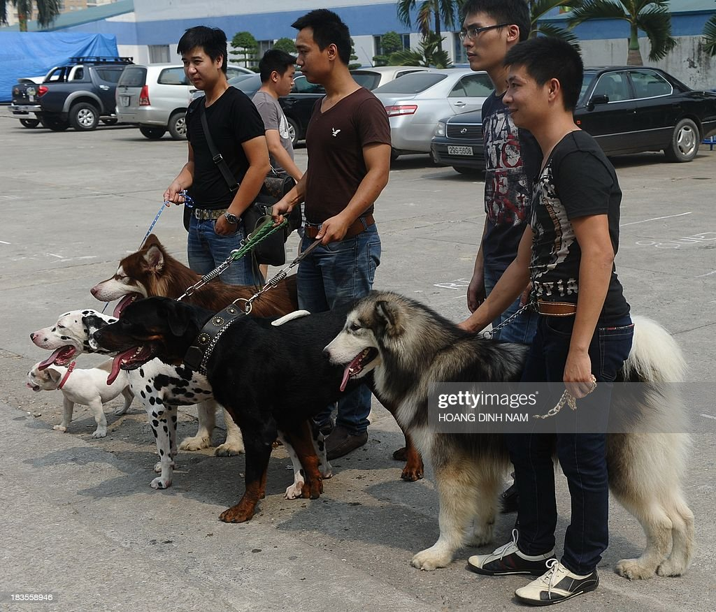 This picture taken on October 6, 2013 shows people with their pet dogs after attending a dog show in Hanoi. Pet ownership in Vietnam has soared over the last 20 years as the middle class swelled since the Southeast Asian communist nation switched to a market economy in the early 1990s.