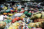 This picture taken on September 14 2015 shows scavengers searching the trash for any usable items at a rubbish dump in the suburbs of Chongqing in...