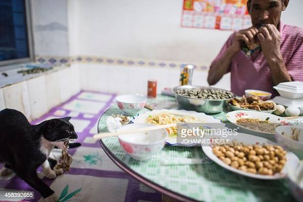 This picture taken on September 19 2016 shows Qin Yusheng having dinner while a cat steals some food from the table in Xianrendao next to Yingkou...