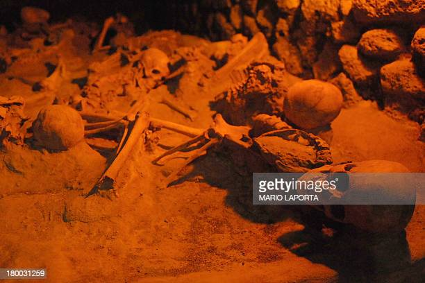 This picture taken on September 7 2013 during a night tour called 'Herculaneum Buried Stories' shows human remains of the ancient town of Herculaneum...