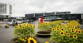 This picture taken on September 9 2014 shows Schiphol Airport near Amsterdam on the day that the preliminary report on Malaysia Airlines flight MH17...
