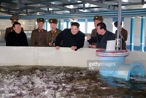 This undated picture released by North Korea's official Korean Central News Agency on December 12 2015 shows North Korean leader Kim JongUn...