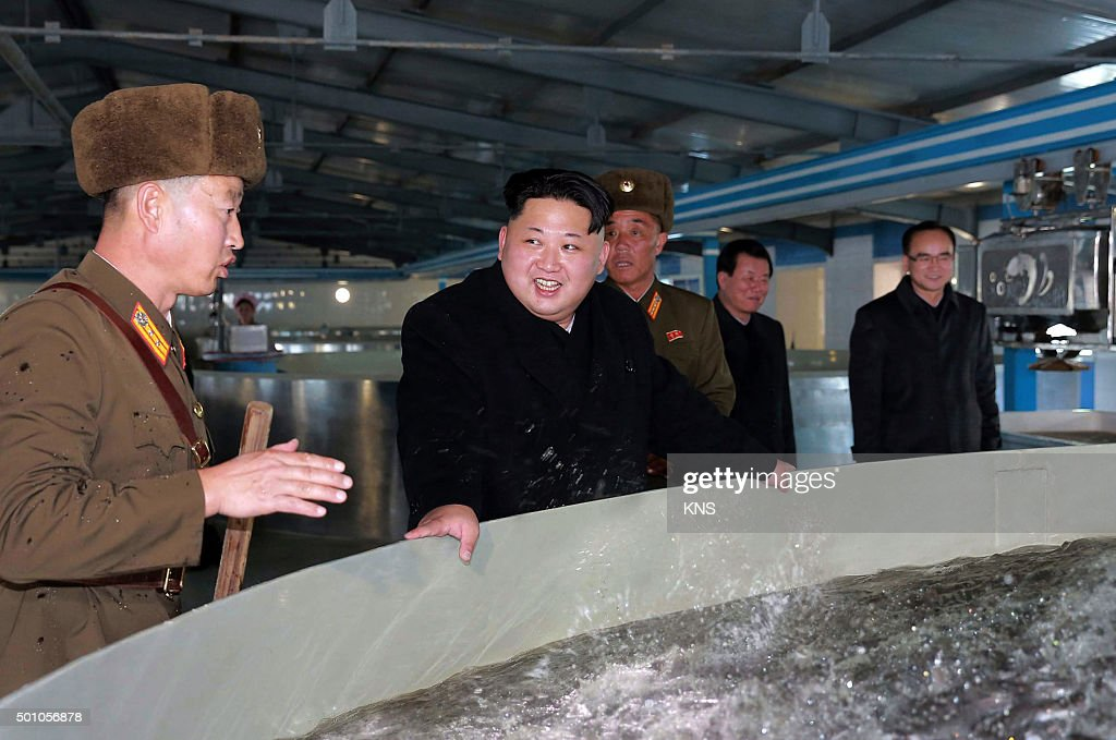 This undated picture released by North Korea's official Korean Central News Agency on December 12, 2015 shows North Korean leader <a gi-track='captionPersonalityLinkClicked' href=/galleries/search?phrase=Kim+Jong-Un&family=editorial&specificpeople=5964161 ng-click='$event.stopPropagation()'>Kim Jong-Un</a> (C) inspecting the newly renovated May 9 catfish farm at an undisclosed location in North Korea. REPUBLIC KOREA OUT -- AFP PHOTO / KCNA VIA KNS CREDIT 'AFP PHOTO / KCNA VIA KNS' - NO