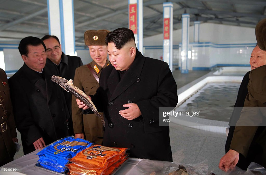This undated picture released by North Korea's official Korean Central News Agency on December 12, 2015 shows North Korean leader Kim Jong-Un (C) inspecting the newly renovated May 9 catfish farm at an undisclosed location in North Korea. REPUBLIC KOREA OUT -- AFP PHOTO / KCNA VIA KNS CREDIT 'AFP PHOTO / KCNA VIA KNS' - NO