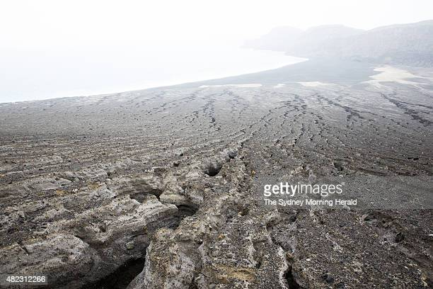 This unnamed land mass is the newest island on Earth and is already home to a small number of plants and animals July 10 2015 It emerged from the...