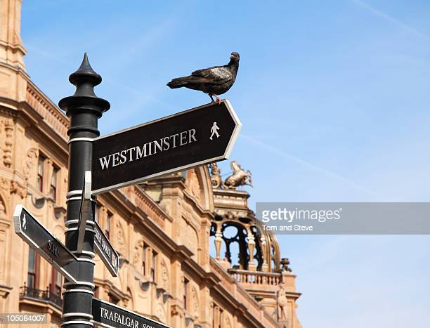 This Way To Westminster