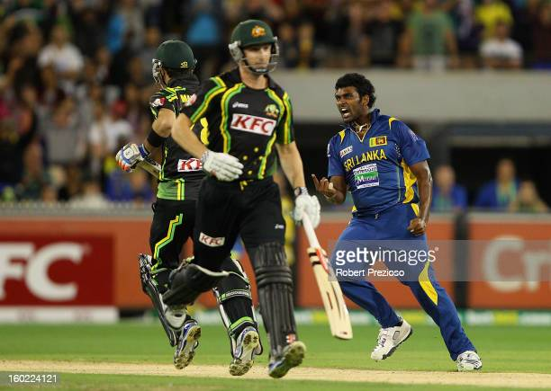 Thisara Perera of Sri Lanka celebrates a win over Australia during game two of the Twenty20 International series between Australia and Sri Lanka at...