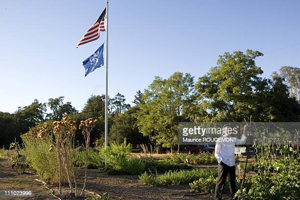 Thomas Keller in the garden of restaurant The French Laundry Napa Valley Illustration San Francisco in San Francisco United States on September 04th...