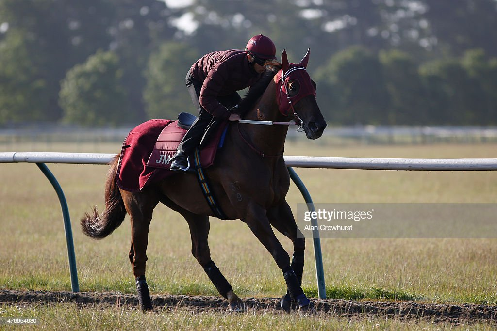 Thomas Yeung riding Able Friend gallop prior to racing at the Royal Ascot meeting in Newmarket on June 11 2015 in Newmarket England