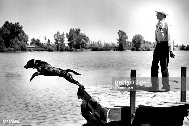 Thor leaps from dock on his master's command to fetch a dummy Lake borders the Swan's property Credit The Denver Post