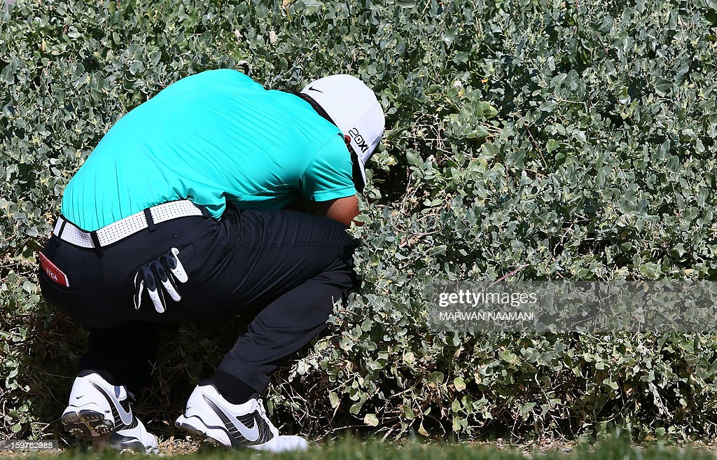 Thorbjorn Olesen of Denmark searchs for the ball after it went into the bushes during the final round of the Abu Dhabi Golf Championship at the Abu Dhabi Golf Club in the Emirati capital on January 20, 2013. Jamie Donaldson reeled in red-hot Justin Rose to win the championship.