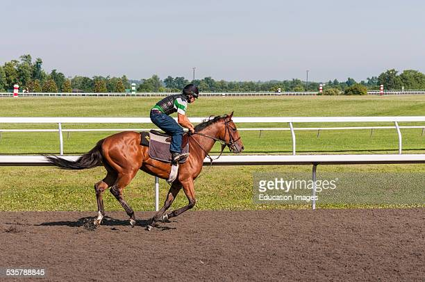 Thoroughbred horse and exercise jockey at the Keeneland horse racing track in Lexington Kentucky USA
