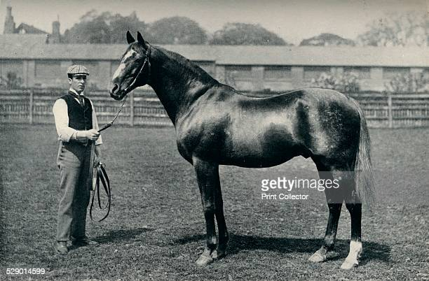 Thoroughbred racehorse Bend Or c1880 Bend Or was a British Thoroughbred racehorse who won the 1880 Epsom Derby From Flat Racing published by Seeley...