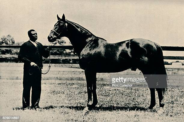 Thoroughbred racehorse Man O' War c1920 Man O' War is considered one of the greatest thoroughbred racehorses of all time During his career he won 20...