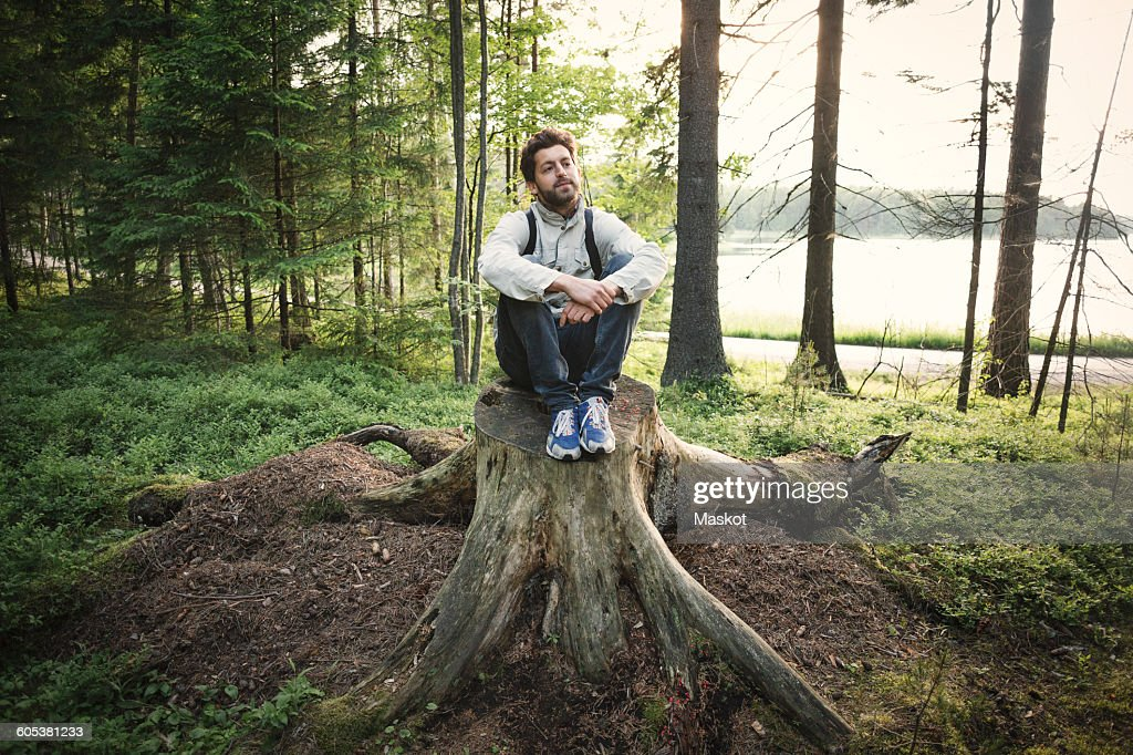 Thoughtful wonderlust man sitting on tree stump in forest