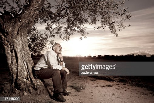 Thoughts next to the old tree : Stock Photo