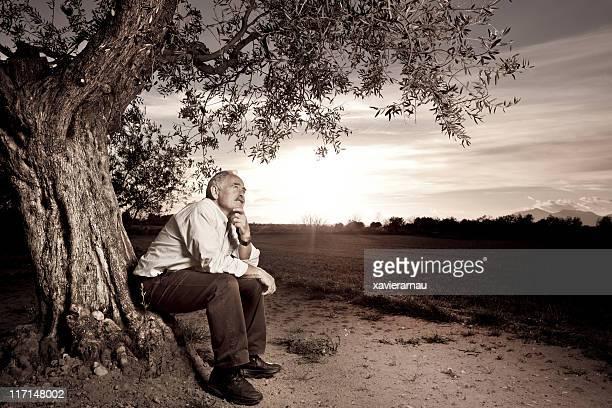 Gedanken neben dem alten Baum