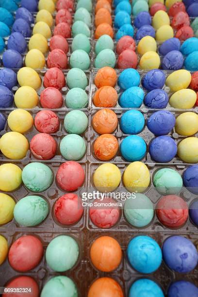 Thousands of dyed eggs are ready to be rolled by children during the 139th Easter Egg Roll on the South Lawn of the White House April 17 2017 in...